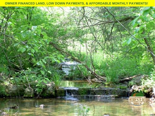 Homestead, Creek, Clearing : Willow Springs : Howell County : Missouri