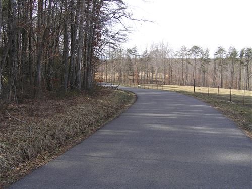Wooded Lot, Lewis Chapel Area : Graysville : Sequatchie County : Tennessee