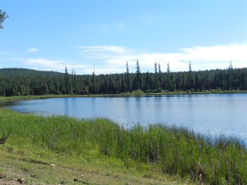 Island Lake Retreat : Kalispell : Lincoln County : Montana