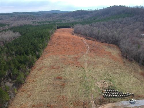 19+/- Acres Of Fenced Pastureland : Goodwater : Clay County : Alabama