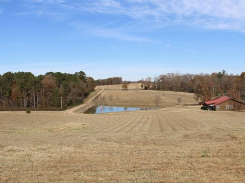 Beautiful 19 Acre Minifarm & Home : Cropwell : Saint Clair County : Alabama