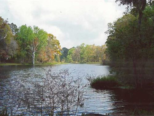 6.07 Acres Land For Sale in Woodbi : Woodbine : Camden County : Georgia