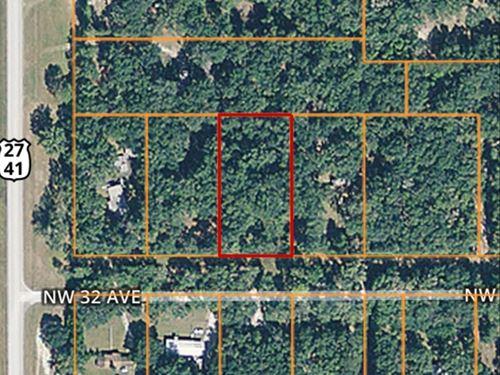 Newberry Hills Subdivision, 1 Acre : Newberry : Alachua County : Florida
