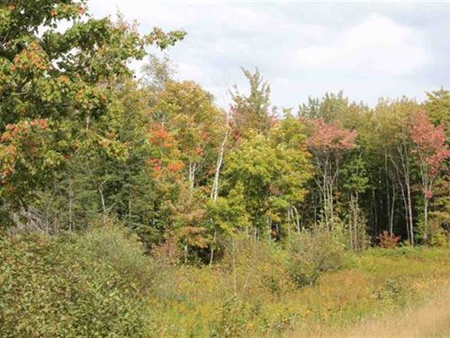 Stenson Rd, Mls 1112634 : Covington : Baraga County : Michigan