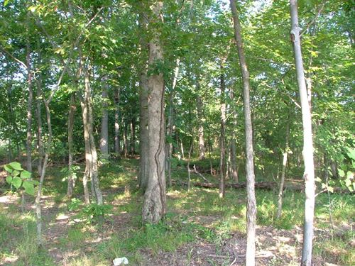 Rare 2 Acres In Ashburn Va : Ashburn : Loudoun County : Virginia