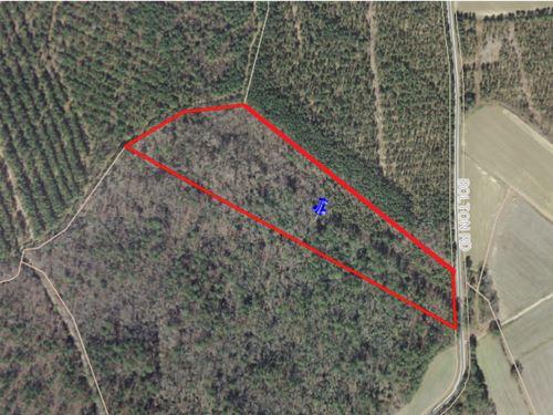 Timberland Hunting Property Rich : Rich Square : Northampton County : North Carolina