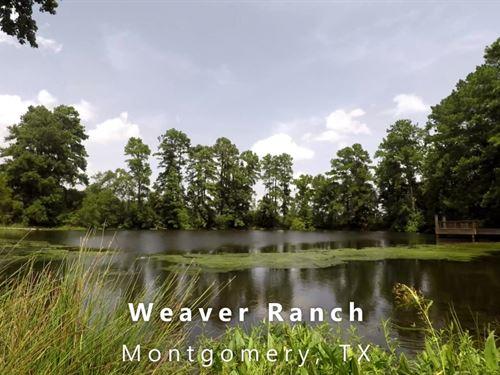 Weaver Ranch, 17 Acres : Montgomery : Texas
