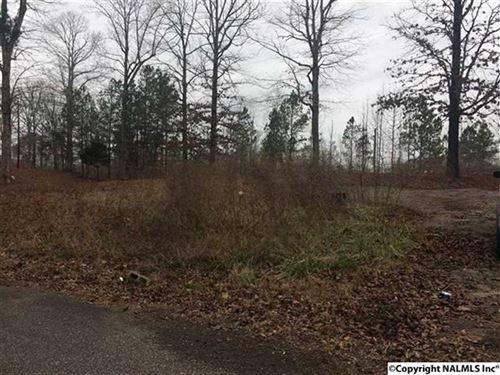6.5 Unrestricted Acres on Ross Lak : Wellington : Calhoun County : Alabama