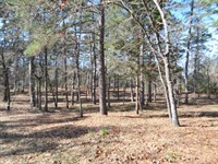 Residential Land Holly Lake Ranch : Holly Lake Ranch : Wood County : Texas