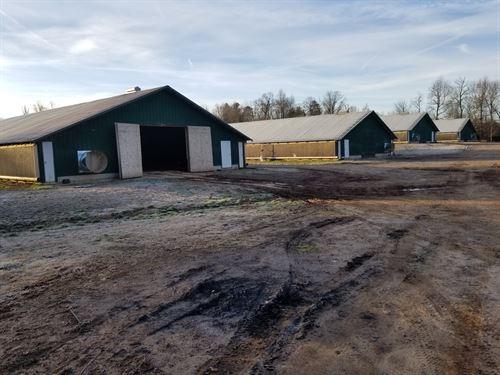 8 House Broiler Poultry Farm : Dawsonville : Dawson County : Georgia