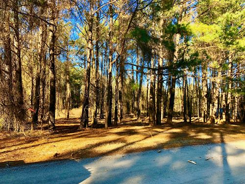 Eastern Nc Residential Land : Belhaven : Hyde County : North Carolina