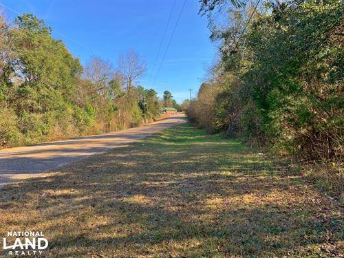Mt, Zion Road Tract : Grove Hill : Clarke County : Alabama