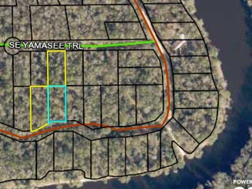 Group Multiple Lots Walking : Lee : Madison County : Florida