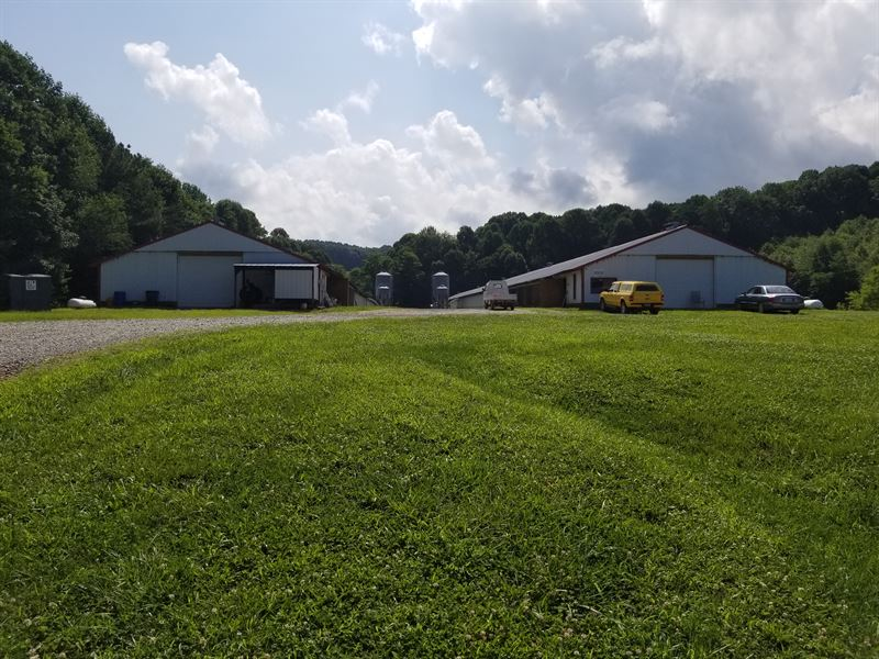 2 House Breeder Poultry Farm : Ellijay : Gilmer County : Georgia