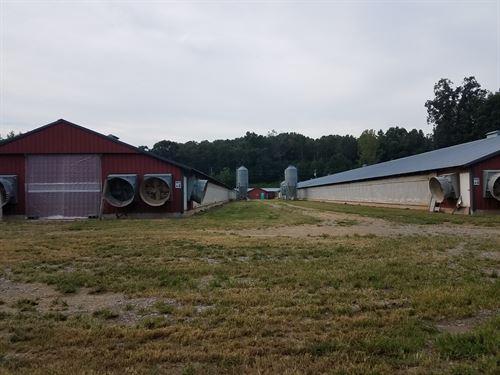 2 House Breeder Poultry Farm : Talking Rock : Gilmer County : Georgia