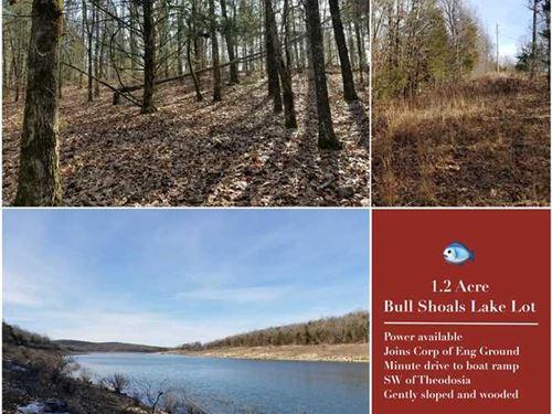 Bull Shoals 1.2 Acre Lake Lot, Th : Theodosia : Ozark County : Missouri