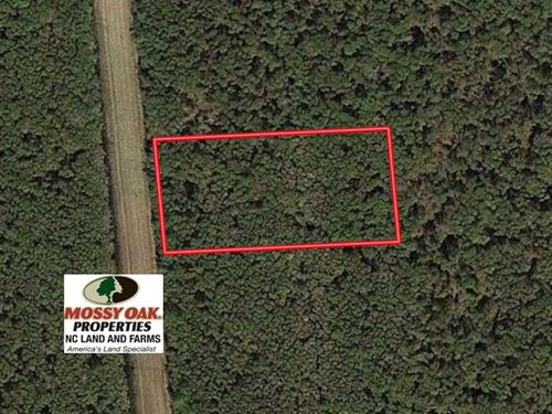Lot 38 Wysocking Bay For Sale in : Engelhard : Hyde County : North Carolina