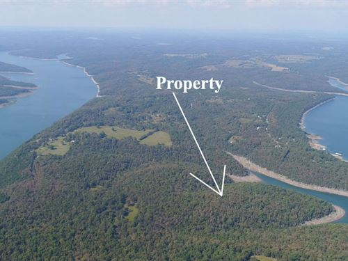 3 Acres On Bull Shoals Lake : Branson : Taney County : Missouri