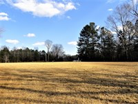 Dungannon Estate Lot : Abbeville : Abbeville County : South Carolina