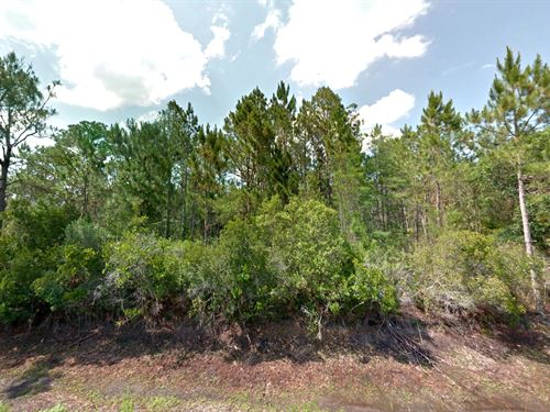 Oversized Corner Lot Flagler Estate : Hastings : Saint Johns County : Florida