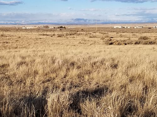 Vacant Land Moriarty NM 4.9 Acre : Moriarty : Torrance County : New Mexico
