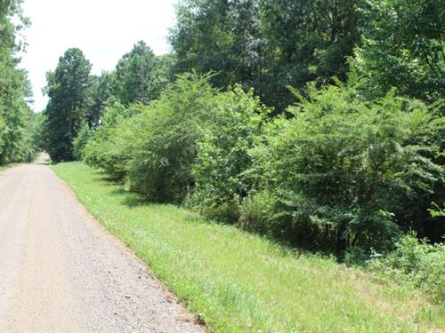 13+ Acres / Great Home Site : Simms : Bowie County : Texas