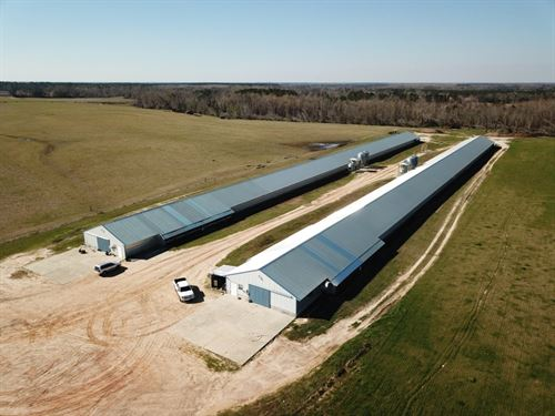 Poultry Farm Houston County : Gordon : Houston County : Alabama