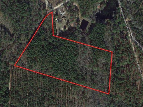 Secluded 13 Acre Homesite : Statesboro : Bulloch County : Georgia