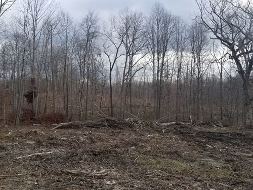 8.96+/- Acres Unrestricted, Creek : Tracy City : Grundy County : Tennessee