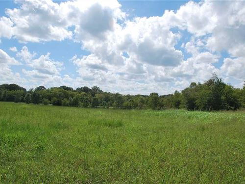 Perfect Residential Lot : Hope Hull : Lowndes County : Alabama