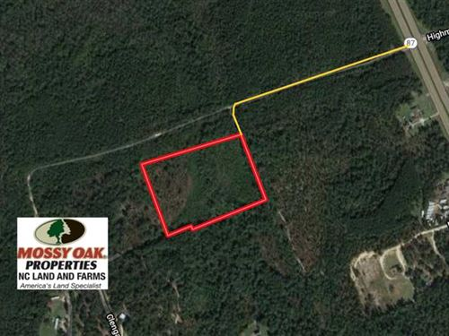 9.9 Acres of Hunting Land For Sale : Cameron : Harnett County : North Carolina