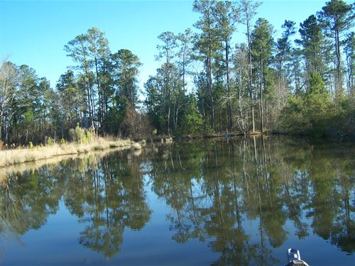 Camden, SC Building Site, Pond : Camden : Kershaw County : South Carolina