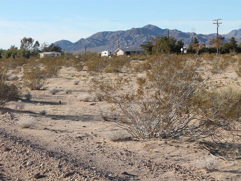 Prime Parcel, Power, Views, $160/Mo : Newberry Springs : San Bernardino County : California