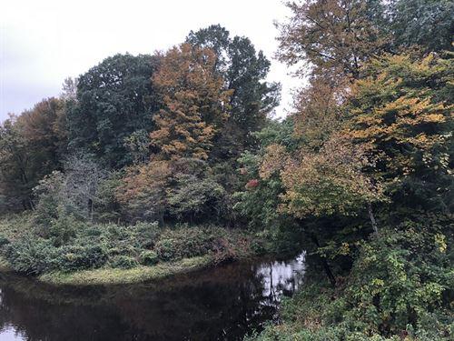 Camper Site On Twin Rivers : Camden : Oneida County : New York
