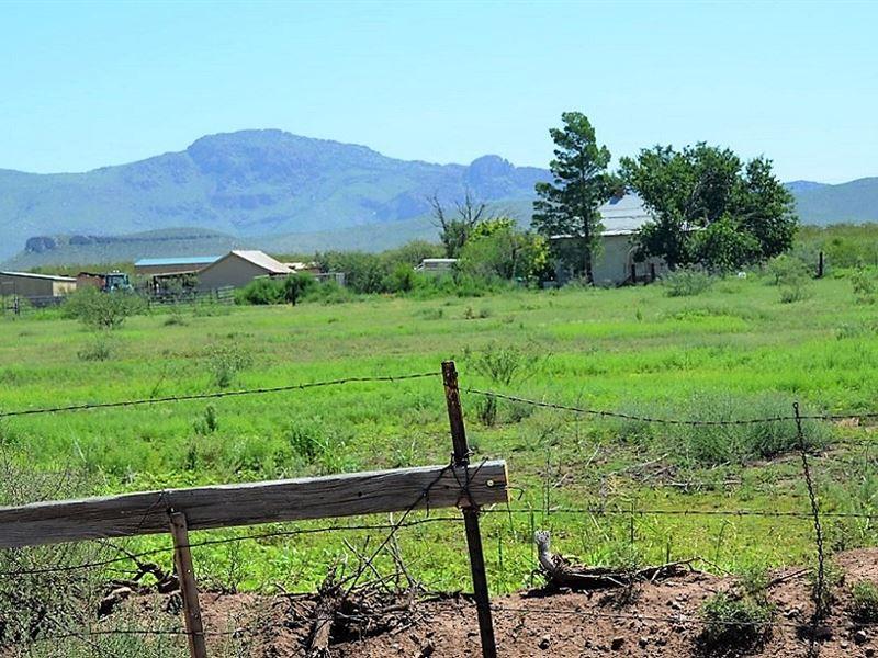 Stunning Property With Killer View : Douglas : Cochise County : Arizona