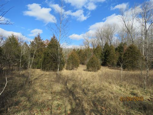 Small Acreage in Douglas CO : Ava : Douglas County : Missouri