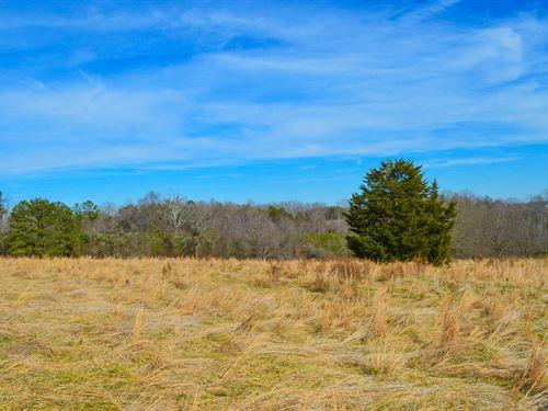 19.2 Acres Near Green Creek Nc : Columbus : Polk County : North Carolina