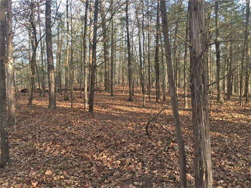 Acreage Inside National Forest : Jasper : Newton County : Arkansas