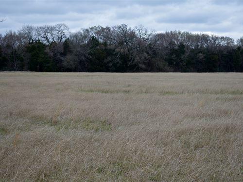 6.6 Beautiful Acres : Fairfield : Freestone County : Texas