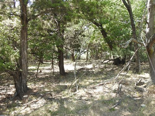 Wooded Lot At Lake Belton : Belton : Bell County : Texas