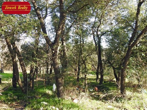 5 Acres, Trees, Belton : Belton : Bell County : Texas