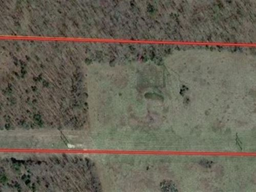 Surveyed Land With Building Sites : Mansfield : Wright County : Missouri