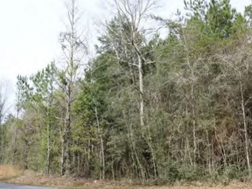 11.5 Acres In George County In Luce : Lucedale : George County : Mississippi
