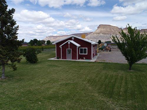 Vineyard Near Palisade, Colorado : Clifton : Mesa County : Colorado