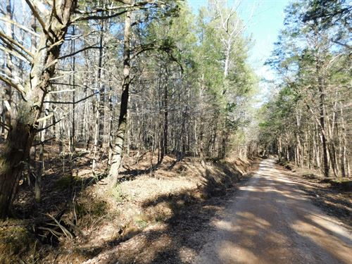 Land Decatur County, Unrestricted : Decaturville : Decatur County : Tennessee