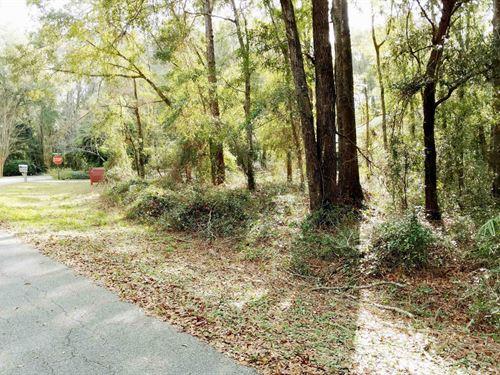 .64 Acre Wooded Lot Lake City : Lake City : Columbia County : Florida
