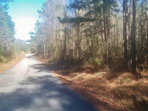 13.88 Acres Land For Sale, Ellisvil : Ellisville : Jones County : Mississippi