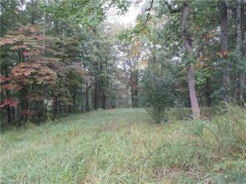 Beautiful Wooded 11.909 Acres : Saint Marys : Pleasants County : West Virginia