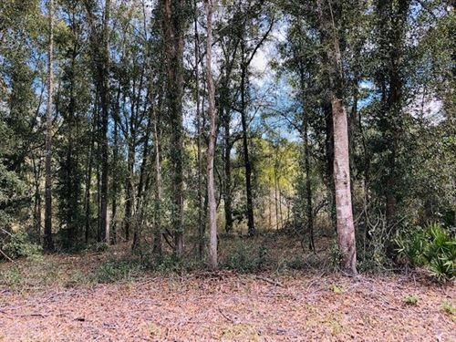 4.77 Wooded Acres 777197 : Fanning Springs : Levy County : Florida