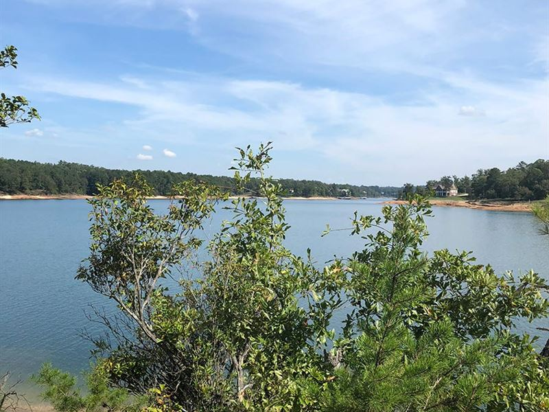 Final Release Smith Lake : Double Springs : Winston County : Alabama